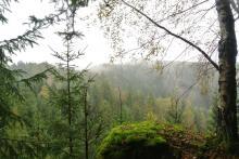 Pohled z Kamzičí stezky